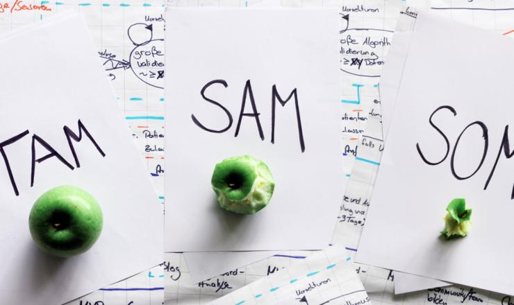TAM SAM SOM – perché sono importanti?