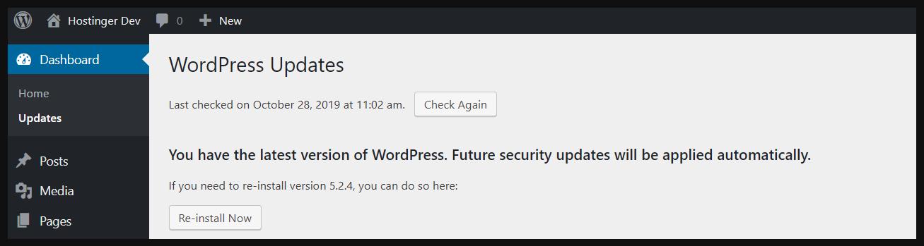 wp updates